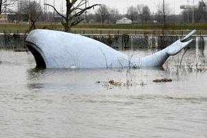 У США штормовий вітер і проливний дощ приніс масштабні руйнування