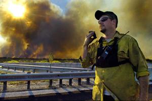 У США вирують лісові пожежі. Знищено тисячі гектарів лісу