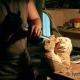 Робота над прикрасами Ноївого ковчегу