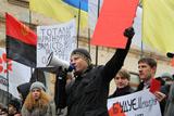 Молоді опозиціонери показали Януковичу червоні картки
