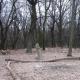 Галявина Громовище на Житомирщині