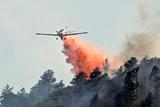 Фото дня. 12 червня. Масова евакуація жителів через лісові пожежі у США, шоу повітряних куль на півдні Китаю та інше