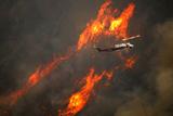 Фото дня. 15 червня. У США продовжують горіти ліси, найдавніший зразок наскального мистецтва знайдений в Іспанії та інше