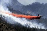 У США лютують потужні лісові пожежі