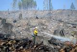 """Фото дня. 9 жовтня. Велика пожежа в американському штаті Вашингтон, """"олімпіада"""" кулінарної майстерності у Німеччині та інше"""