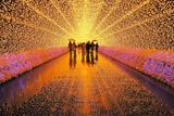 Зимовий фестиваль світла у Японії