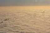 Фото дня. 23 листопада. Бійня в лікарні Гватемали, на столицю Польщі опустився густий туман та інше