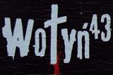 Річниця Волинської трагедії: компромісна резолюція Польщі, критика української опозиції та
