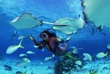 Ідеальні місця для підводного плавання