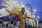 У Бразилії пройшов щорічний карнавал