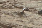 Фото дня. 11 лютого. Марсохід Curiosity виявив загадковий об'єкт на Марсі, Папа Римський Бенедикт XVI збирається зректися престолу та інше