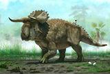 Вчені знайшли невідомий раніше вид динозаврів