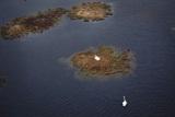 Чорні озера Югри: наслідки нафтових аварій