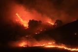 Фото дня. 25 листопада. Акції протесту в Україні, масштабна лісова пожежа у США та інше