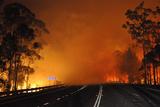 Пожежі в Австралії: тисячі людей евакуйовано, знищено сотні будинків