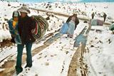Фото вихідного дня. 1 вересня. Розстріл людей у Франції, рясні снігопади у Перу та інше