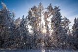 Велич якутської зими
