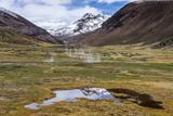 Національний парк Сахама. Болівійська долина гейзерів та вулканів