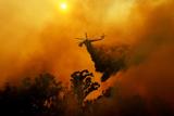 Пожежі в Каліфорнії охопили чотири тисячі гектарів
