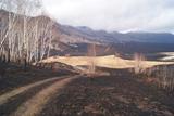 У Забайкаллі лісові пожежі вирують на площі понад 100 тисяч гектарів
