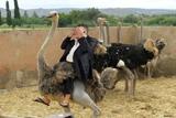 Президент страусів. Фотожаби на інтерв'ю Януковича