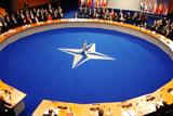 Резолюція Парламентської Асамблеї НАТО «Про солідарність з Україною»