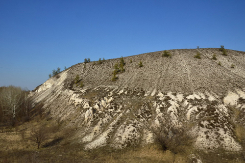 Крейдяна флора - унікальний заповідник Донбасу