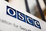 Обережне лідерство. Чи зміниться діяльність ОБСЄ за головування Німеччини?