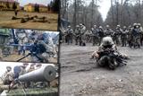 Десантники опановують військову науку за стандартами НАТО