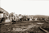 Звернення у зв'язку з порушенням парламентом Республіки Польща домовленостей щодо спільної оцінки польсько-українського протистояння у 1943-1945 роках
