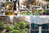 Marina One: багатофункціональний комплекс в Сінгапурі