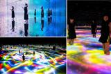 У Токіо відкрилася найбільша виставка віртуального мистецтва