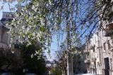 Київ. Шлях до свого міста