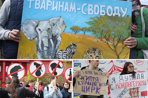 Цирк без тварин. У Києві відбувся мітинг проти використання тварин у цирку