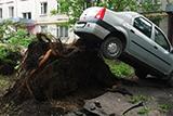 Наслідки урагану в Москві
