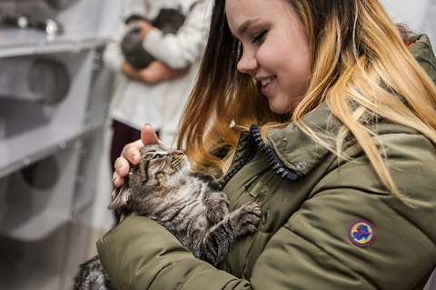 A stray cat adoption center opens in Kyiv