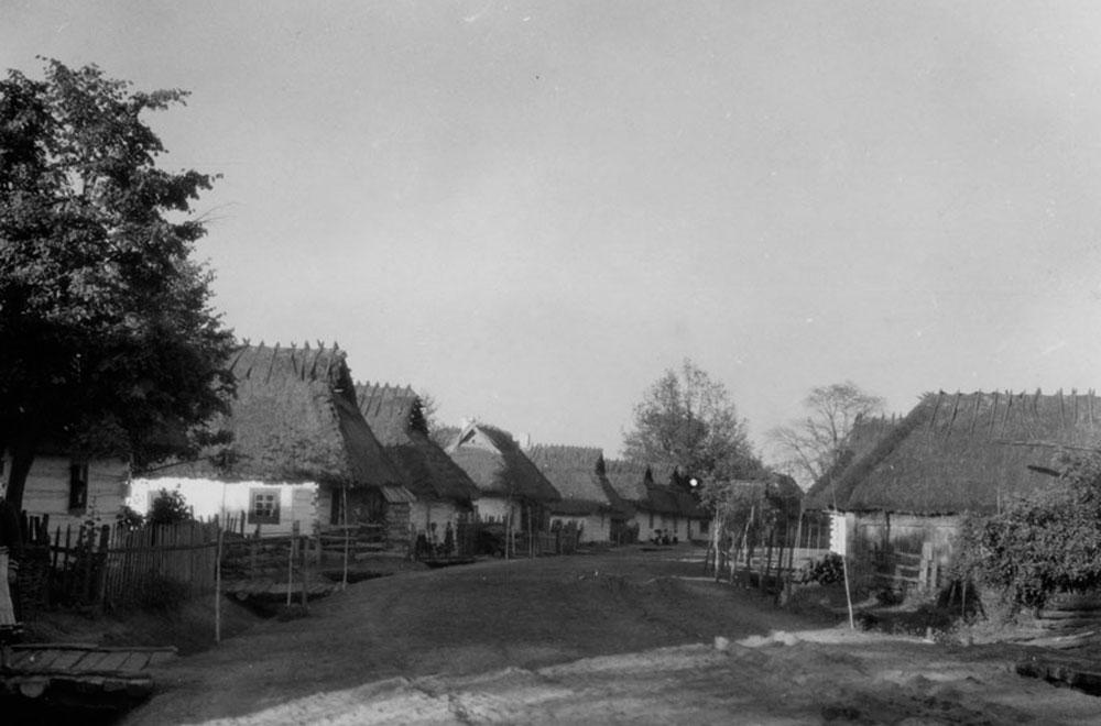 Полісся на фото 1929 років