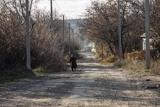 Як живуть луганські села у зоні розведення військ