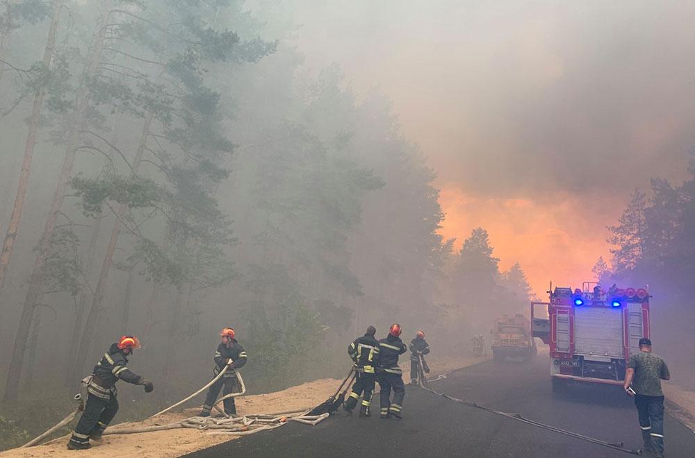 Масштабні лісові пожежі на Луганщині