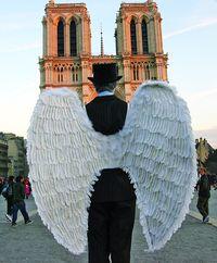 Перед Собором Паризької Богоматері кожна душа прагне почуватися янголом